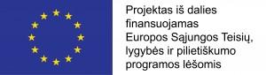 ES logo Teisiu lygybes ir pilietybes programa