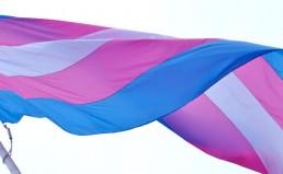kgm-historic-trans-flag-raising-from-facebook