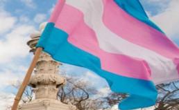 transgender-flag_640x345_acf_cropped-5